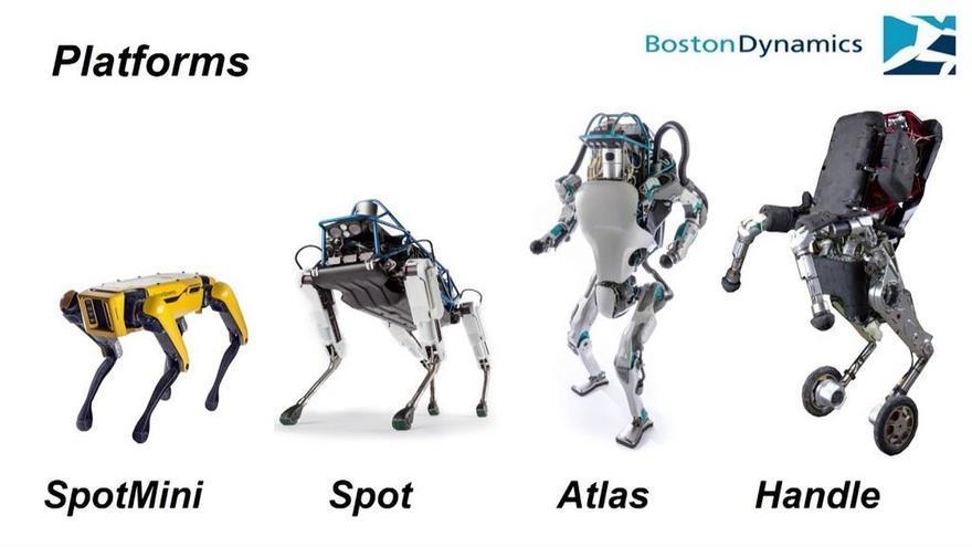 Robots perrunos que vigilan la pandemia