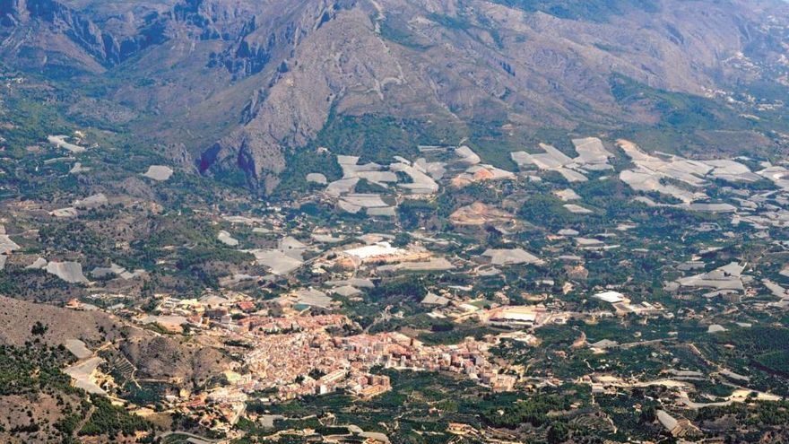 Bancales de Callosa: paisaje de nísperos