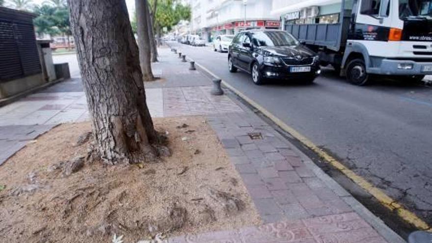 L'Ajuntament de Platja d'Aro proposa que el carrer Doctor Fleming sigui de vianants