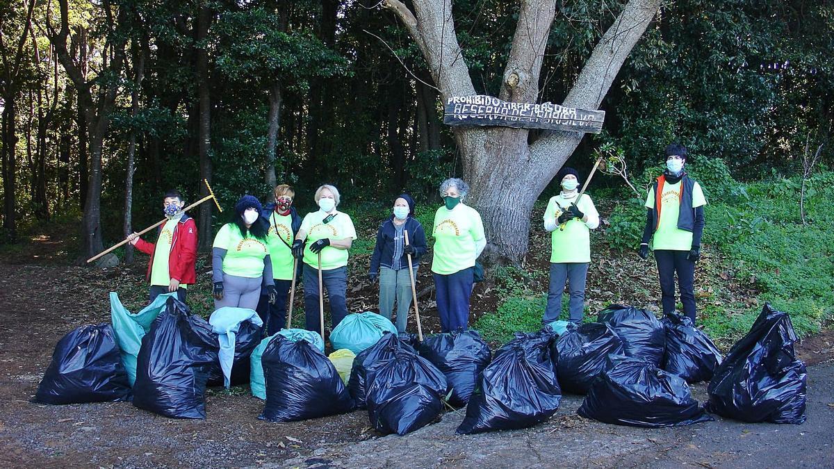 Un grupo de ocho voluntarios desarrolló este mes actuaciones de control y erradicación de flora exótica en el bosque de Agua García, en Tacoronte.