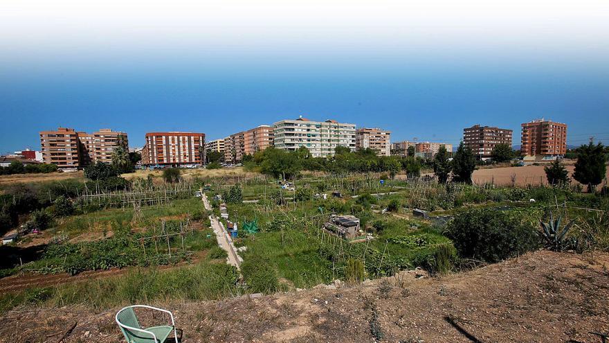La anulación del plan del litoral compromete la idea de Ribó para Benimaclet