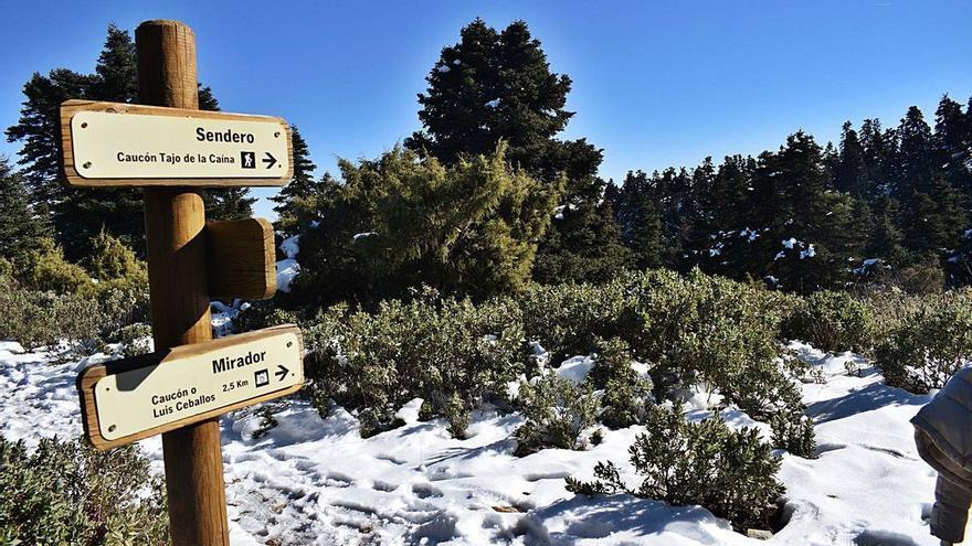 El Senado inicia este martes la aprobación definitiva de la Sierra de las Nieves como Parque Nacional