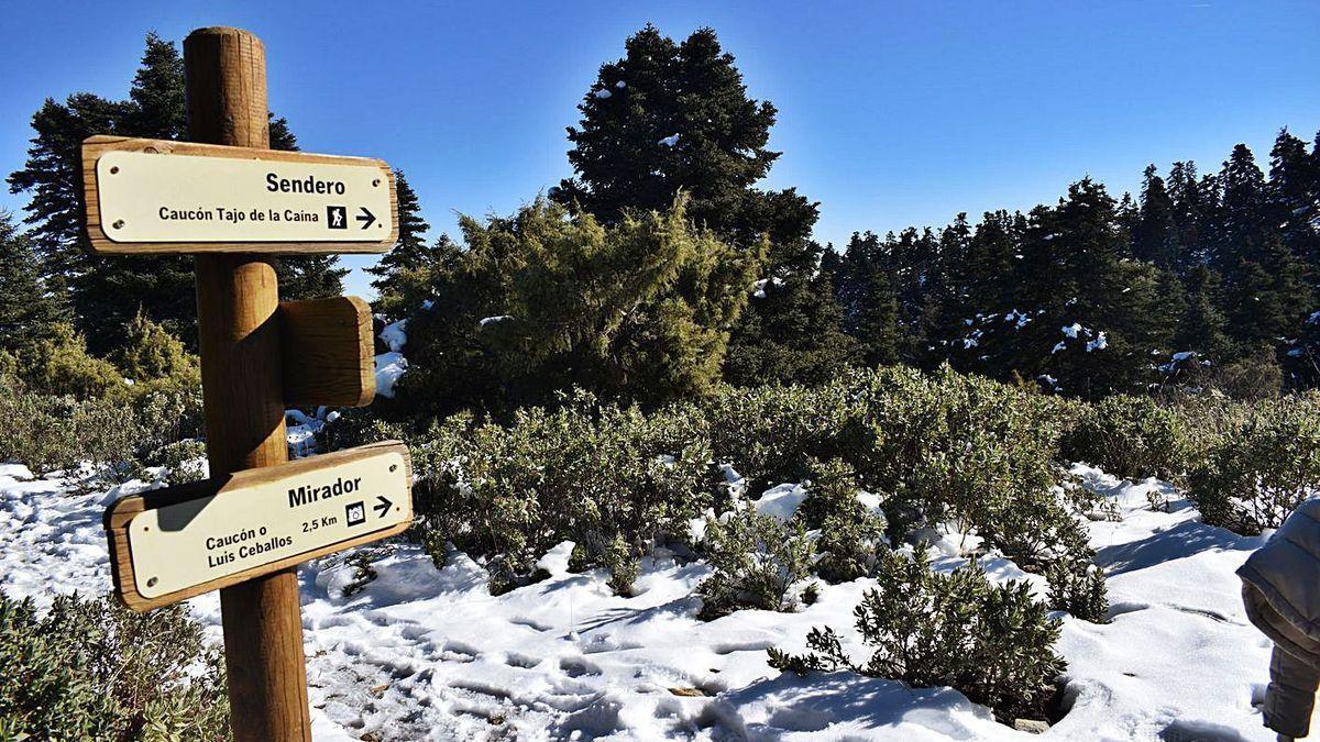 Imagen de la Sierra de las Nieves.