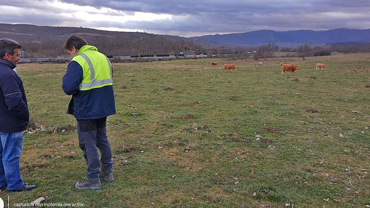 Terrenos de Santa Colomba cedidos por el Ayuntamiento para la implantación de un parque fotovoltaico. | A. S.