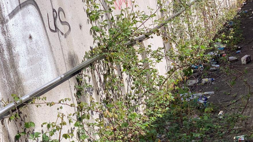El PP critica el modelo de recogida de basura de la ciudad y solicita un servicio puerta a puerta