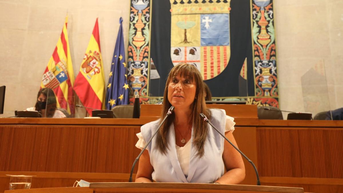 La consejera de Sanidad de la DGA, Sira Repollés, este viernes durante su intervención en el pleno de las Cortes.