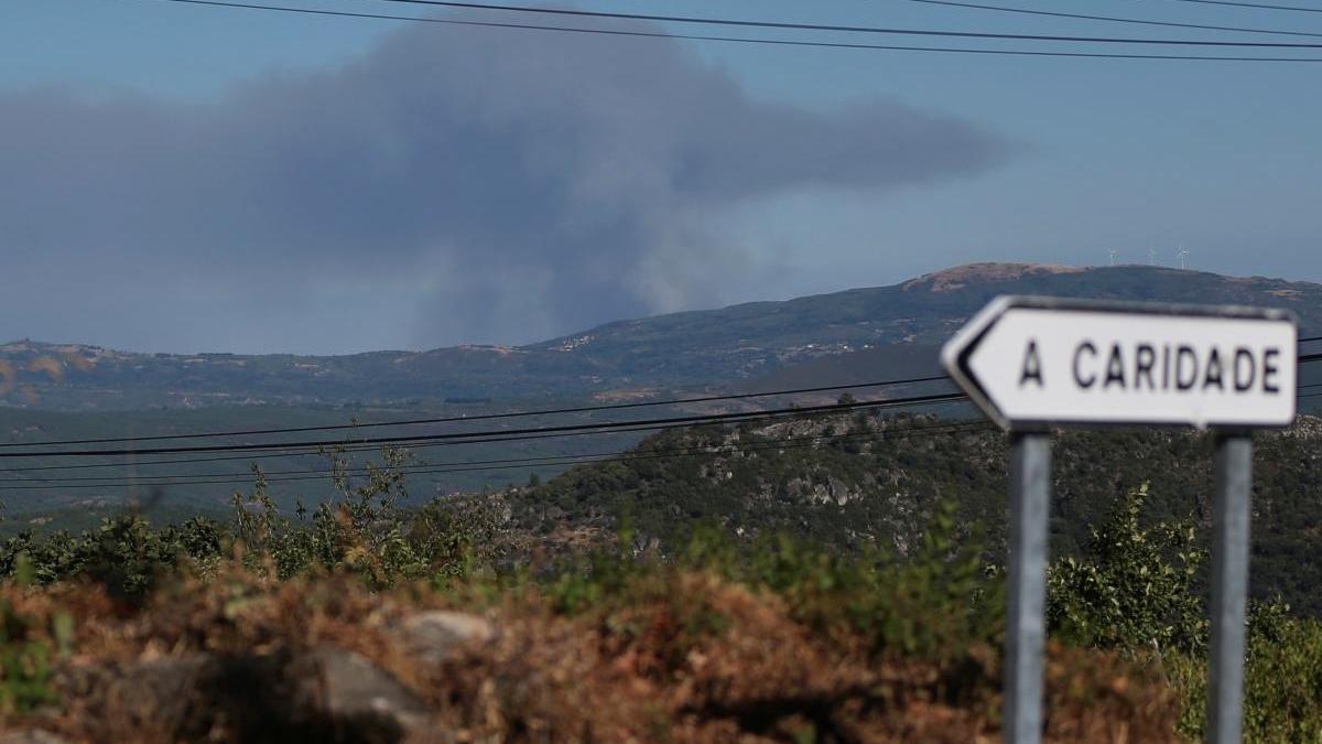 Vista del terreno quemado por el incendio // Efe