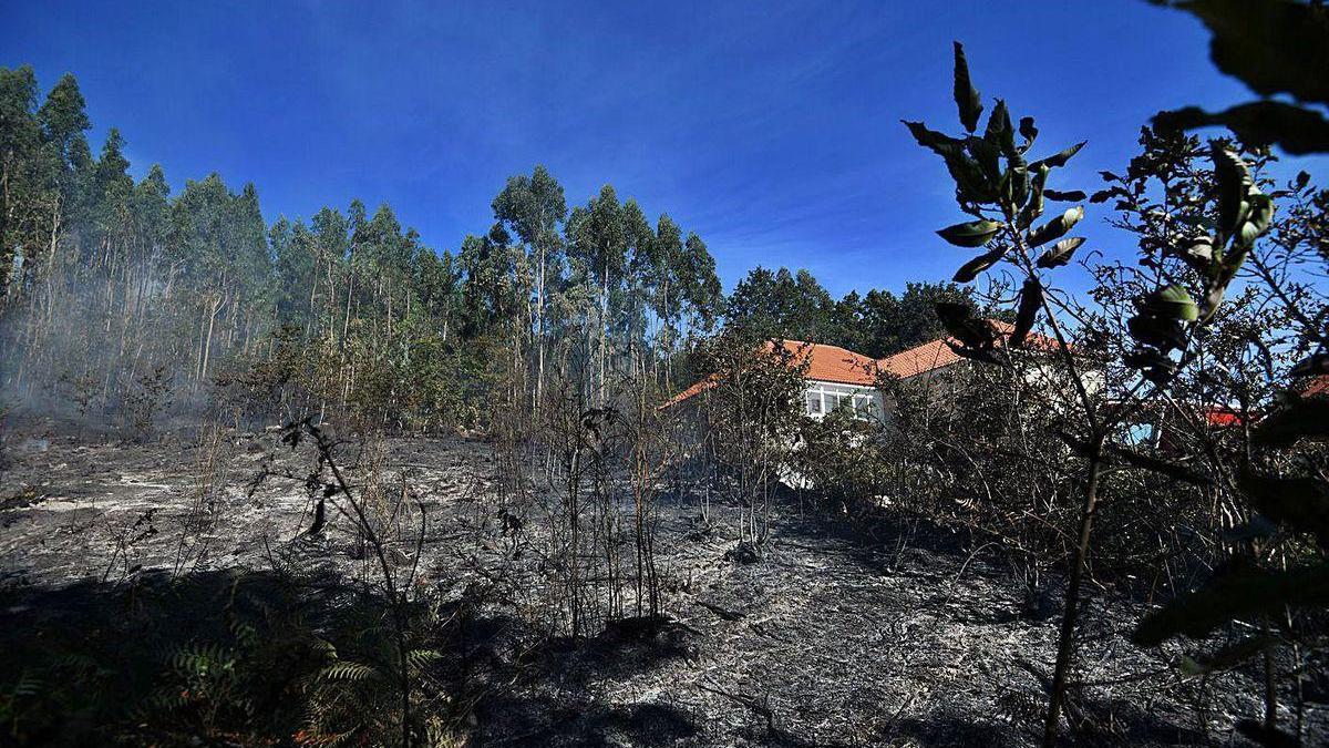 Superficie quemada en el incendio de Augasantas, en Cerdedo-Cotobade.