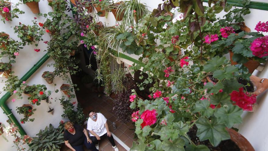 Patios de Córdoba 2021: Los recintos más escondidos... cuando menos es más