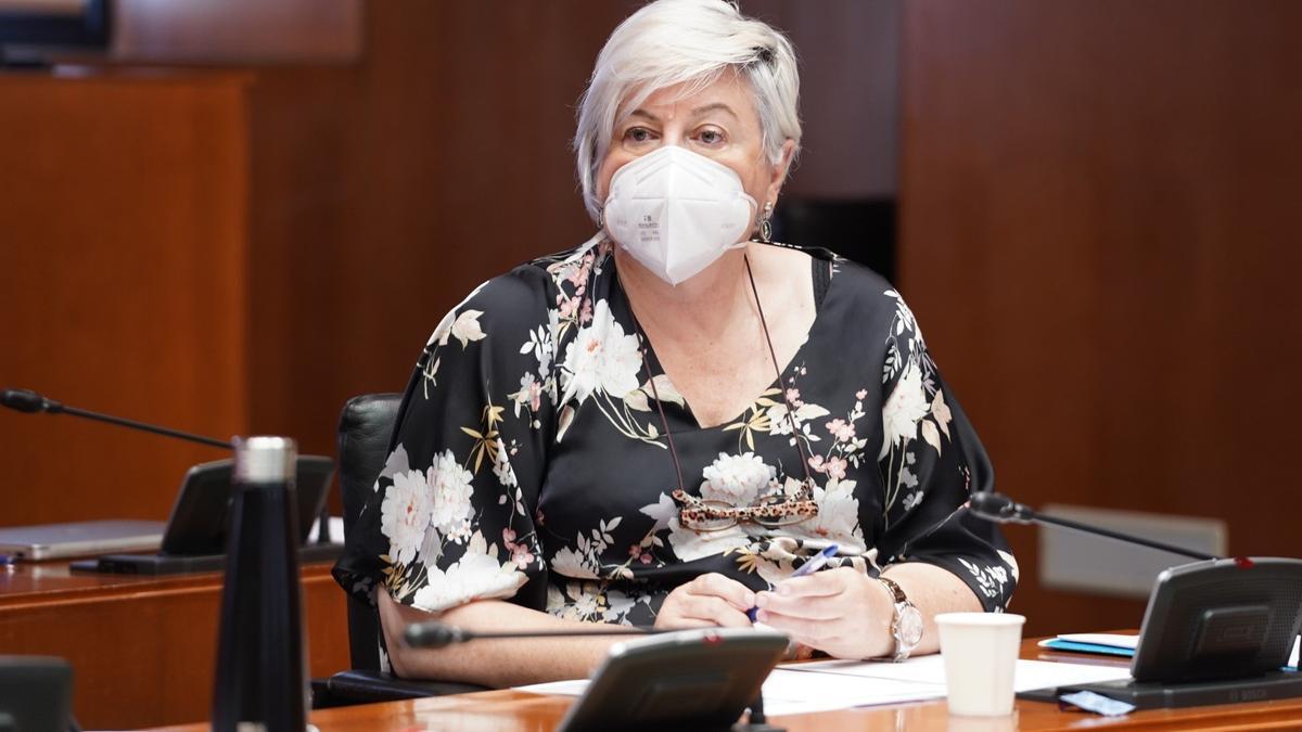 La diputada del PP en las Cortes de Aragón, Pilar Gayán.
