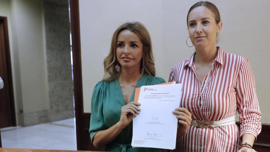 Ciudadanos propone permitir la relación familiar en la gestación subrogada