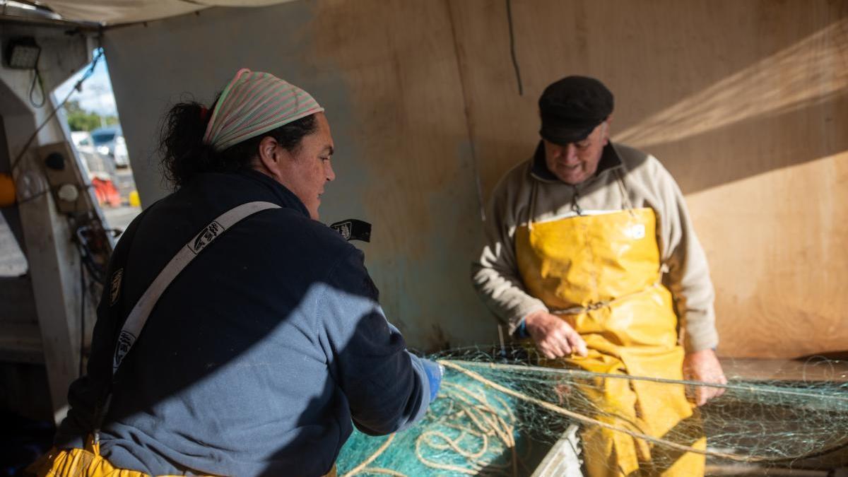 Aquests ajuts contribueixen a reforçar el sector pesquer com un dels puntals de l'economia blava del país-