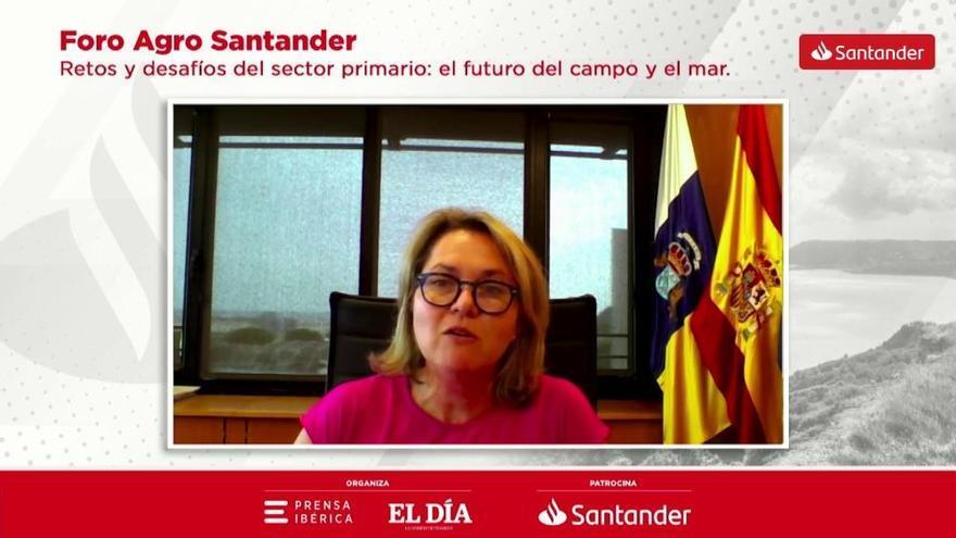 Canarias facilita las inversiones y aligera la burocracia en el sector primario