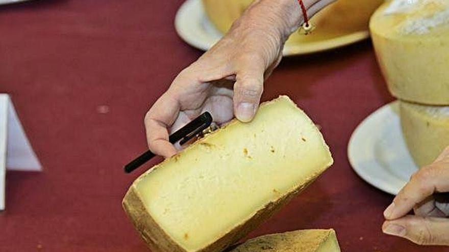 Los mejores especialistas del queso debaten sobre el producto en la Isla
