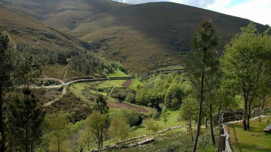 Los montes de las dos comarcas produjeron el año pasado más de 292.000 m3  de madera