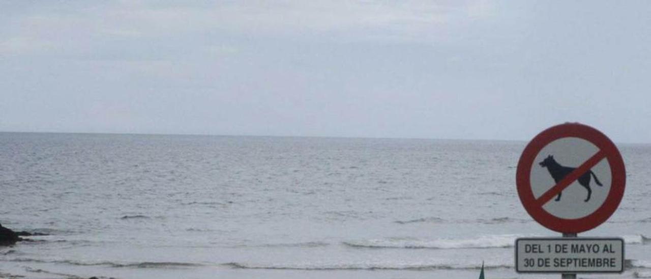 La playa de Xivares, ayer, con la bandera verde.