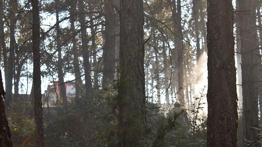 La manca de pluges pot complicar la temporada d'incendis al Solsonès