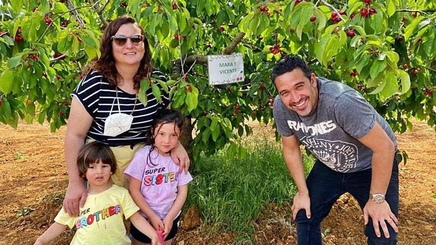 'La Panderola' apadrina las cerezas de la Salzadella