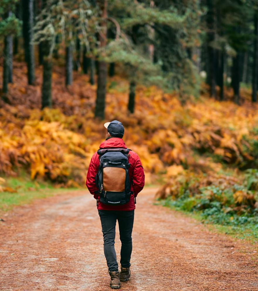 Ocho planes baratos y originales para disfrutar del otoño
