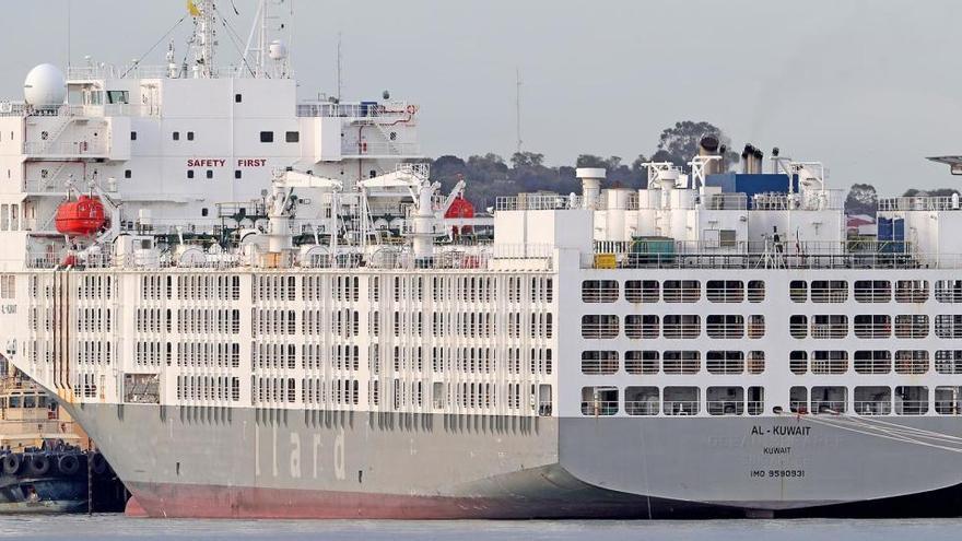 Al menos dos muertos y once rescatados tras naufragar un carguero panameño