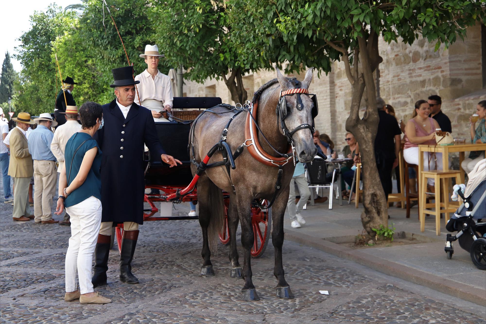 El atalaje de tradición regresa a España