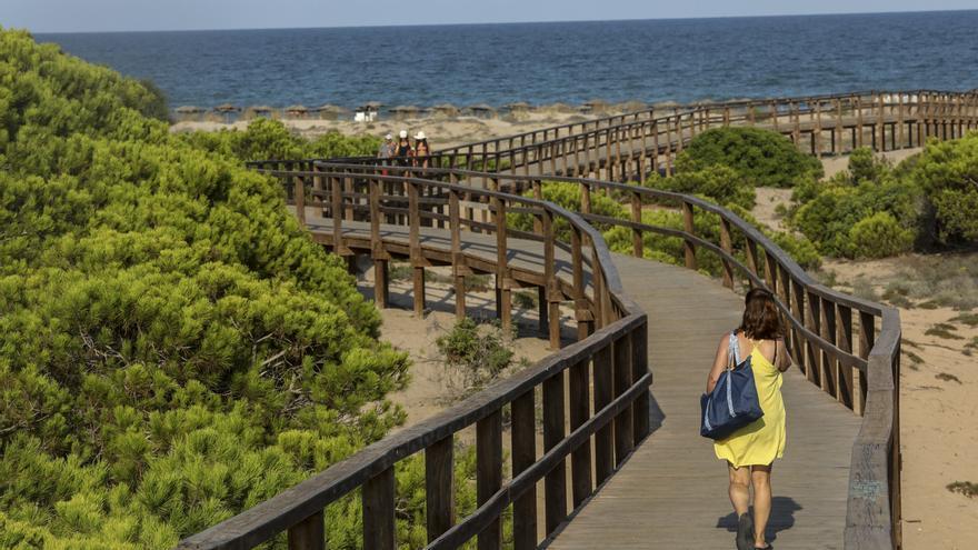 El PP de Elche propone hacer gratis el autobús a la playa
