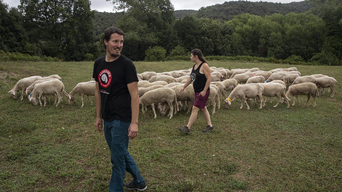En Marçal i l'Helena treuen a pasturar les seves ovelles.