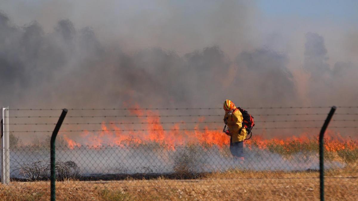 Arden unos 7.000 metros cuadrados de pastos junto al aeropuerto