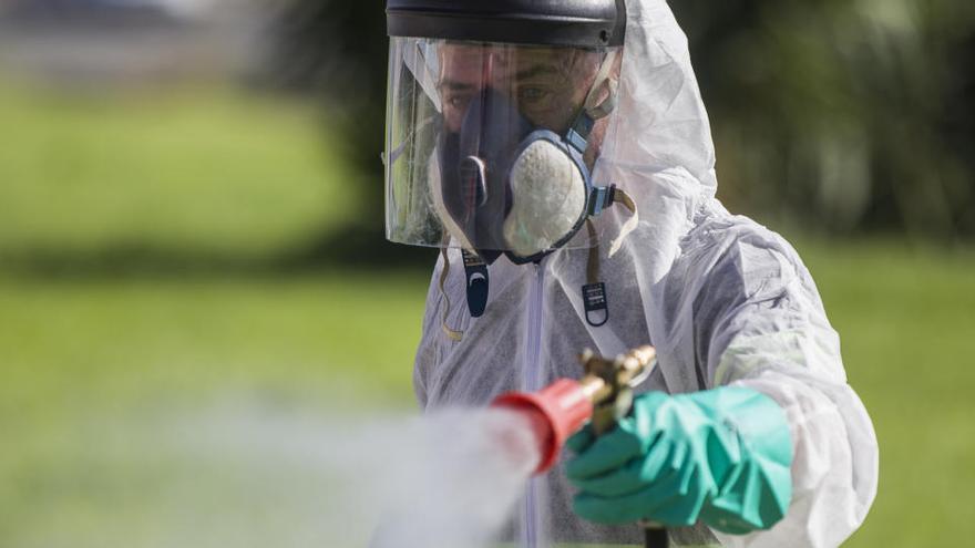 Autorizan la fumigación masiva contra el virus del Nilo
