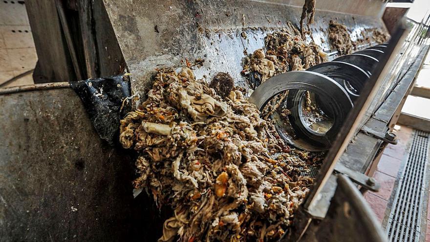 El 60% de residuos sólidos en las depuradoras de Palma son toallitas húmedas