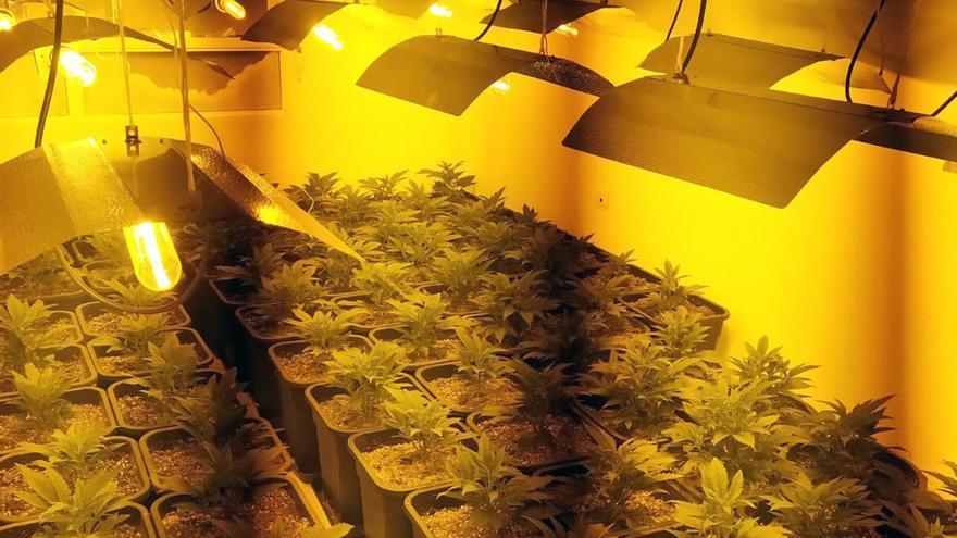 Cae un grupo criminal dedicado al tráfico de drogas desde Cabezo de Torres