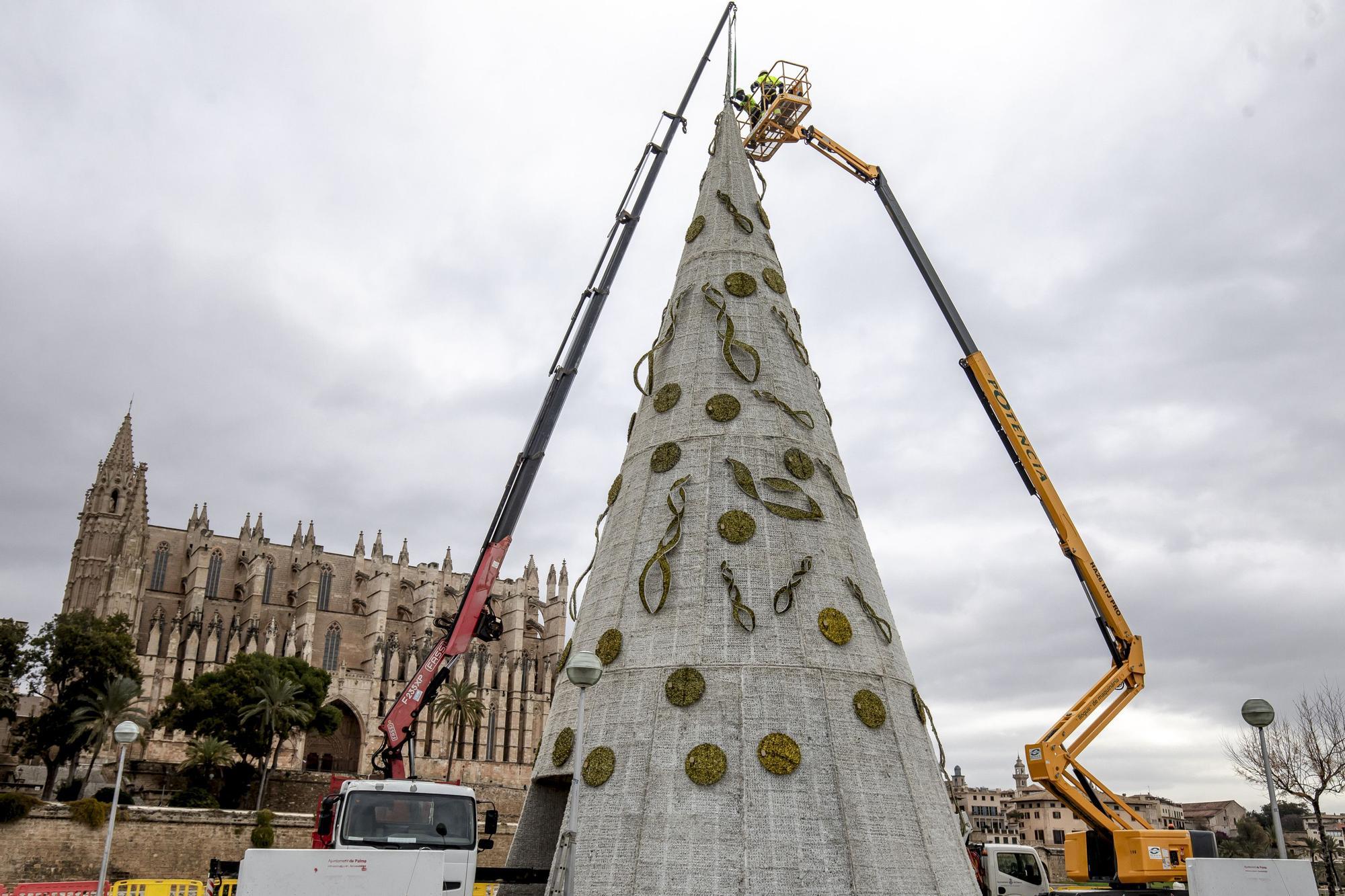 Cort inicia la desinstalación de las luces de Navidad