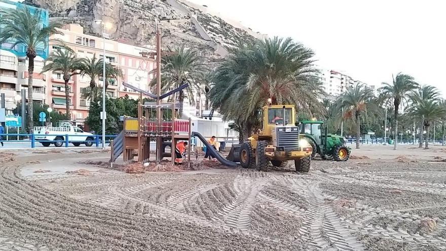 Activado el dispositivo especial de Limpieza en Alicante para paliar los daños del temporal