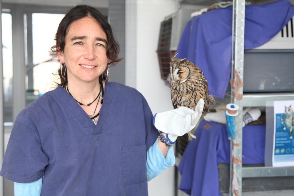 L'Hospital d'Animals dels Aiguamolls de l'Empordà