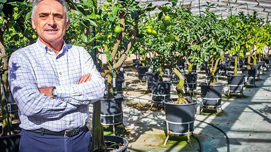 Agricultura destituye al director del IVIA para situar a un cargo fiel a Compromís