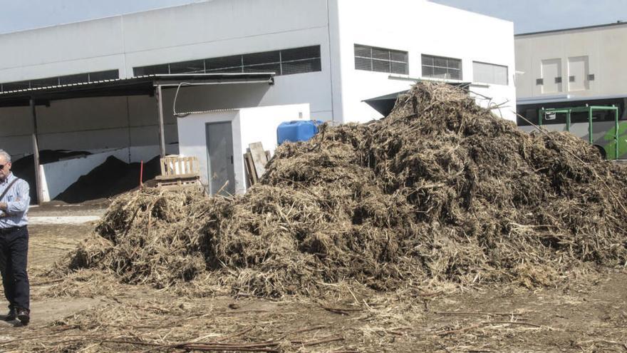 El Consell apoya con 100.000 euros a la UMH para investigar los beneficios del compostaje