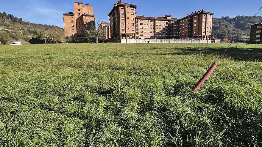 Los parques caninos se amplían en Langreo con un espacio en Riaño