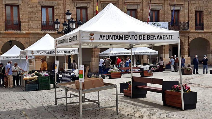 La XXVI Feria del Pimiento se despide con una Plaza Mayor con apenas dos hortelanos y sin morrones que ofrecer
