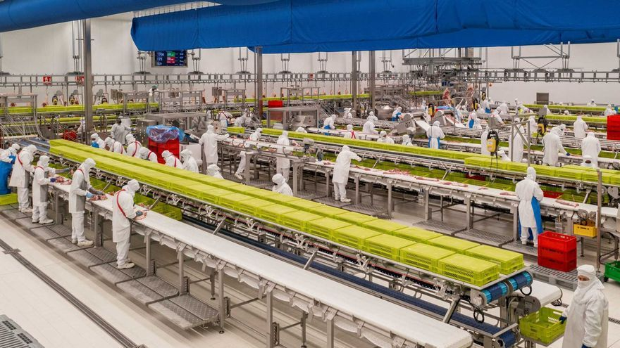 Noel posa en marxa la nova planta a Olot per impulsar la divisió de productes frescos