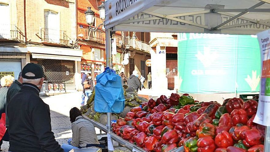 Los hortelanos prevén ventas de 5 a 7 toneladas en la XXVI Feria del Pimiento de Benavente