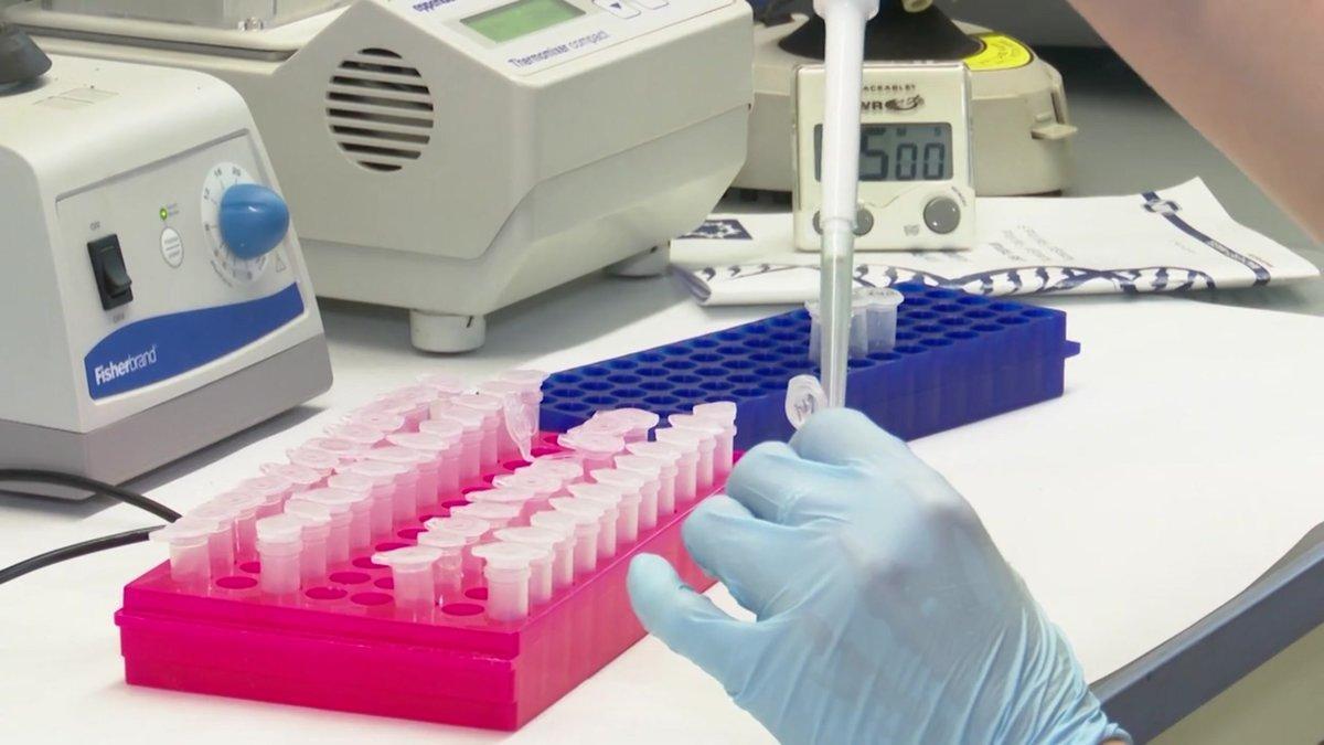 Una de las vacunas rusas contra el coronavirus muestra que genera inmunidad