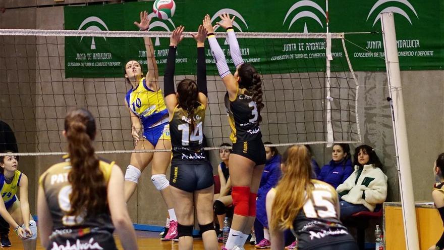 Adecor y Voley Córdoba suman victorias claves