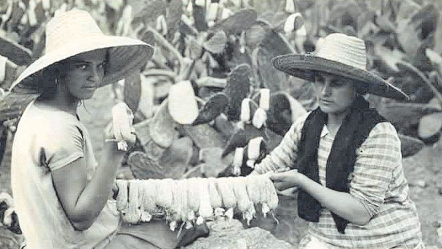 Historia de la industria canaria