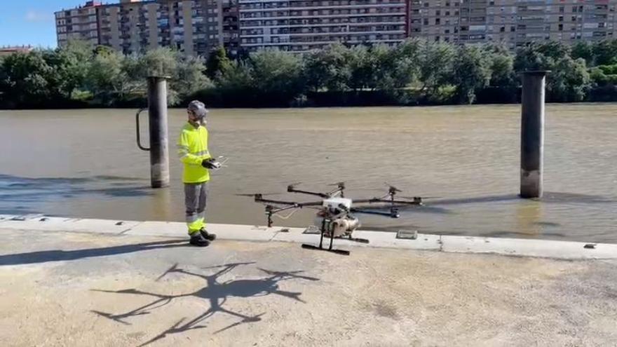 Zaragoza usa un dron para fumigar el Ebro contra la mosca negra