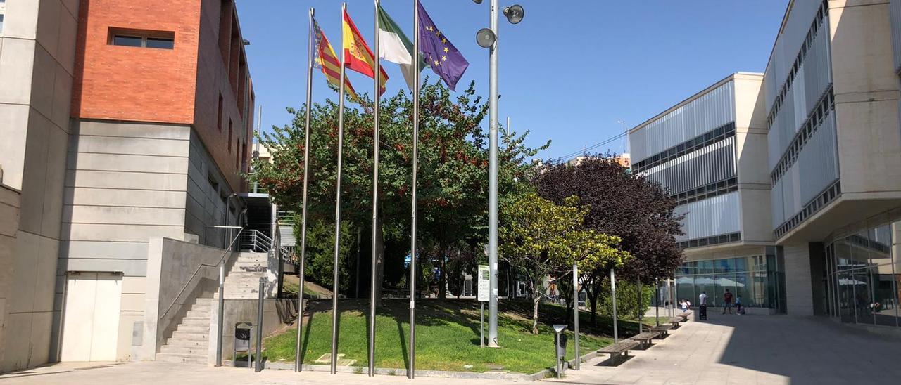 El Ayuntamiento de San Vicente del Raspeig.