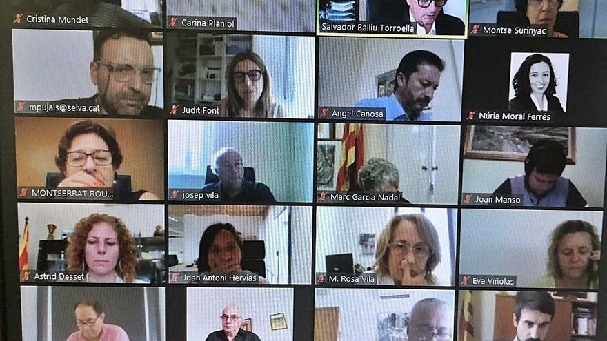 Els alcaldes de la Selva exigeixen que es derogui el ramal de la MAT a Riudarenes