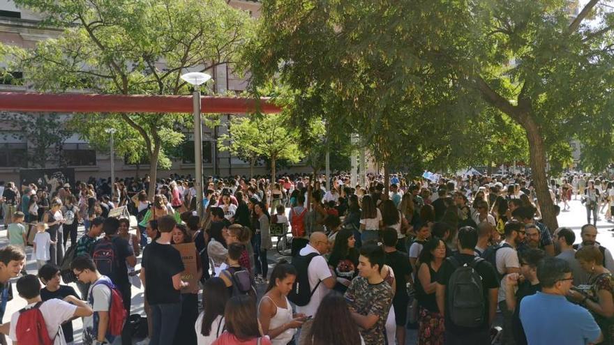 """Fridays for Future""-Initiative mobilisiert Tausende auf Mallorca"
