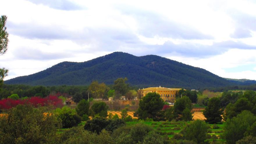 Bodegas Carrascalejo: Tradición y tierra, valores de un vino histórico de la Región