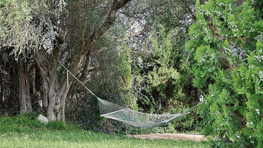 Der besondere Garten von Mallorca