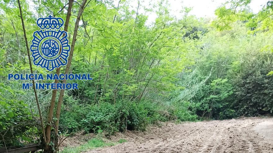 Dos detinguts més per la plantació de marihuana desmantellada a Palamós